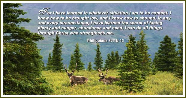 I have learned to be content!   Word Blessings   Scripture memory